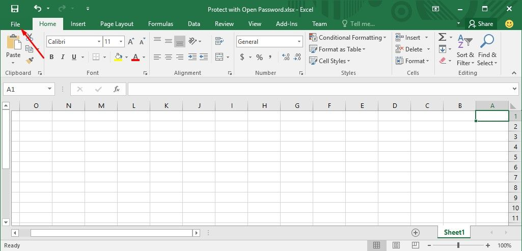 how to put a password on excel when opening
