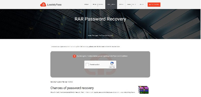 Online password recovery docx.