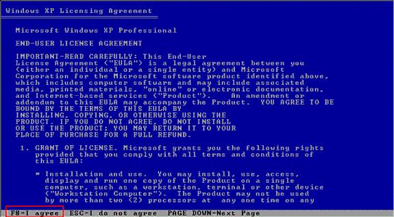 xp accetta la licenza